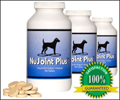 NuJoint Hip and Joint Supplement
