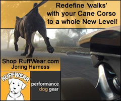 RuffWear Performance Dog Gear, Joring Harness: Take walks with your Cane Corso to a whole new level!